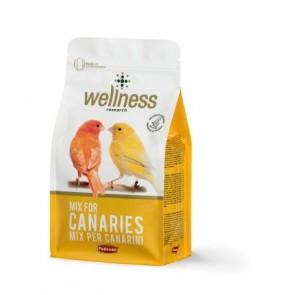 PD toit kanaarilinnu wellness 1kg