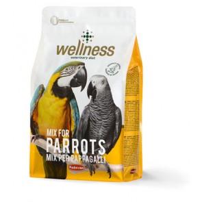 PD toit suure papagoi wellness 2,5kg