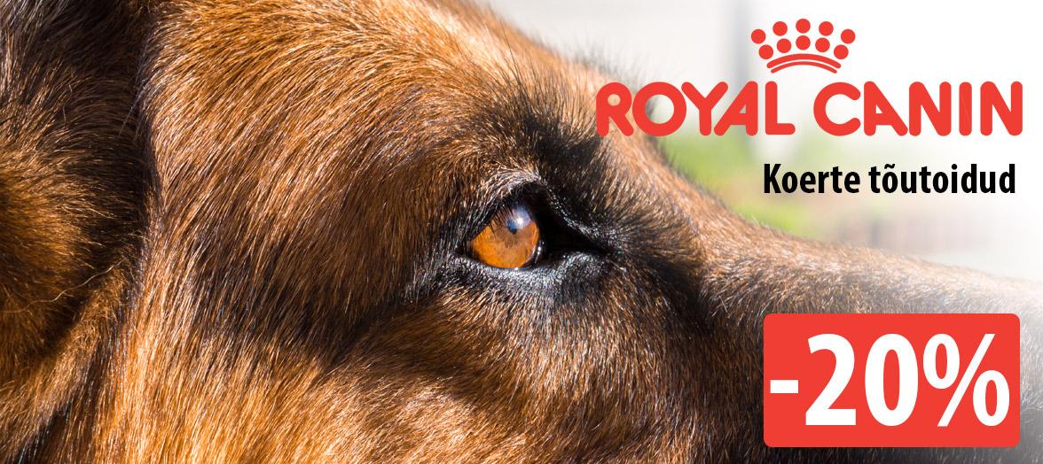 Royal Canin allahindlus