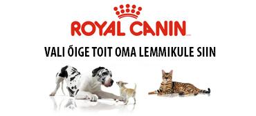 Royal Canin toote valija